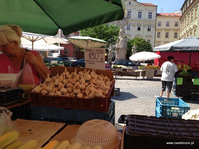 Morawy - Brno - Zelný trh - Czosnek