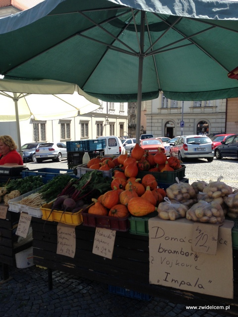 Morawy - Brno - Zelný trh - Dynie