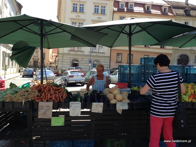 Morawy - Brno - Zelný trh - Bakłażany