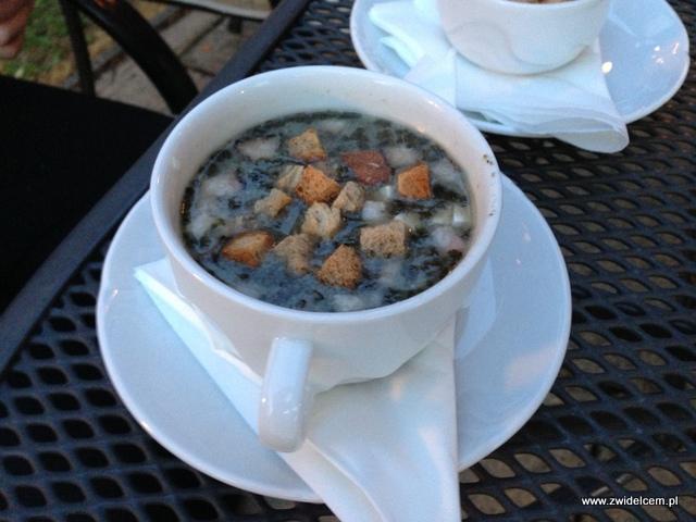 Morawy - Rozdrojovice - Hotel Atlantis - zupa czosnkowa z grzankami