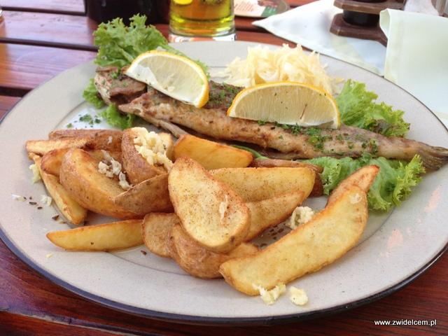 Morawy - Brno - Restaurace U Kotvy- Pstrąg z ziemniakami