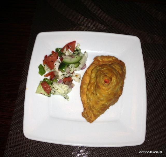 Kraków - Indus Tandoor - chicken samosa