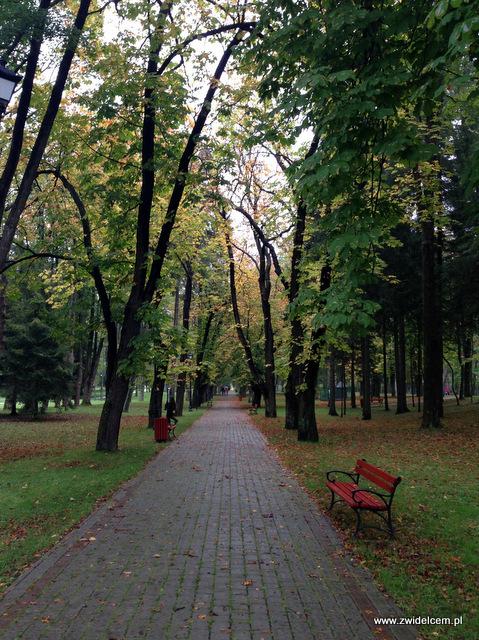 Wysowa - Święto Rydza - Alejka w Parku Zdrojowym