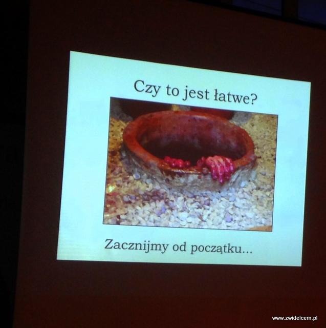 Kraków - Klimaty Południa - Vinisfera.pl - Degustacja win gruzińskich - prezentacja - kwewri