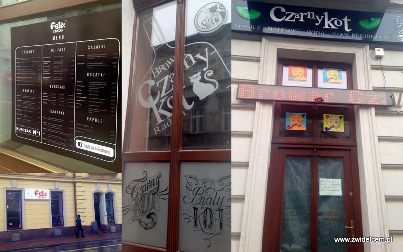 Kraków - Kazimierz - Starowiślna - Felix Chicken - Czarny KOt