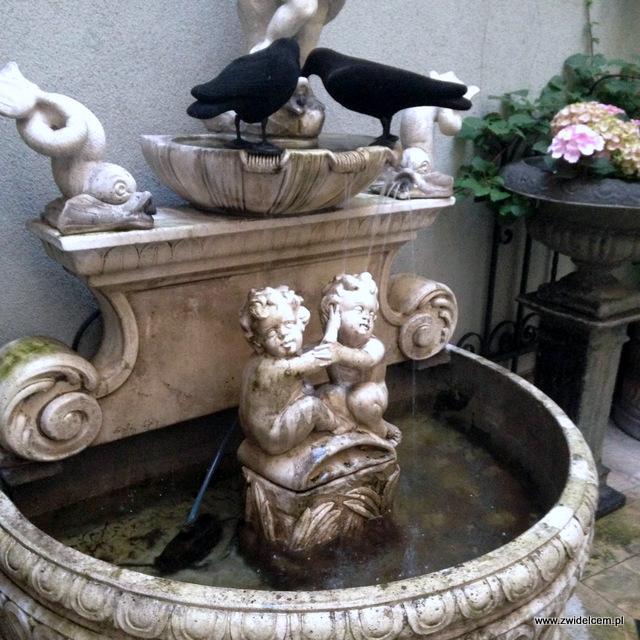 Kraków - Sissi Organic Bistro - fontanna