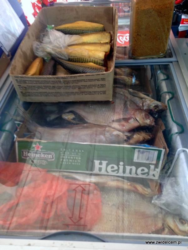 Gruzja - Stepantsminda- ryby w sklepie w Kazbegi