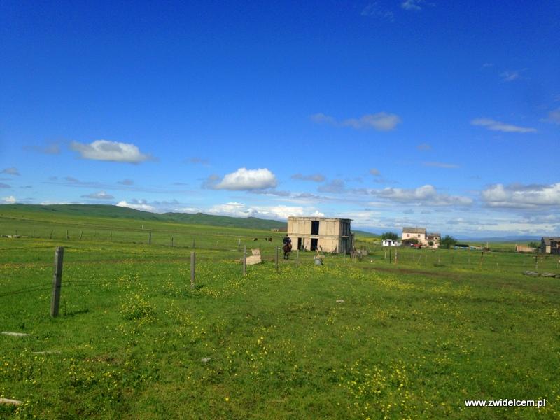 Gruzja - Udabno - Oasis Club - step