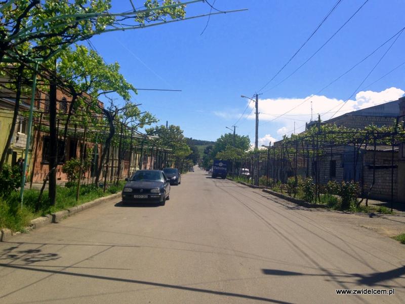 Gruzja - Gori - uliczka z winoroślą