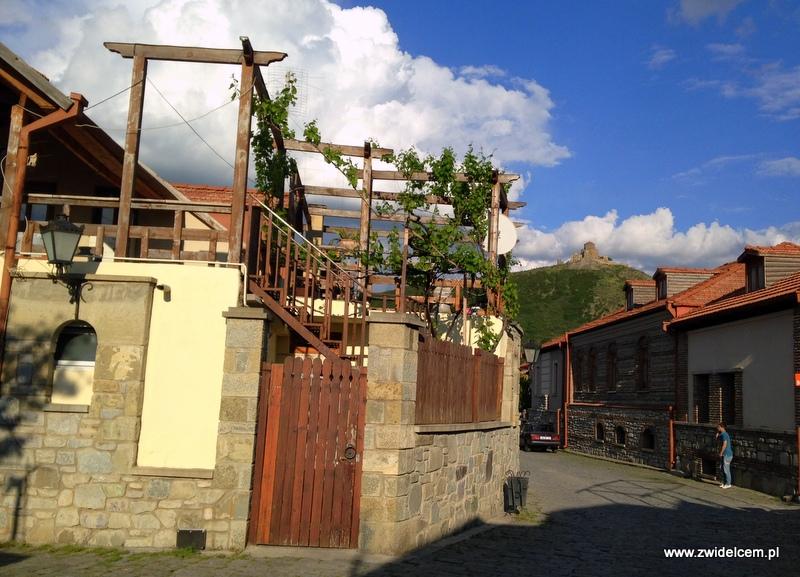 Gruzja - Mccheta - winorośl