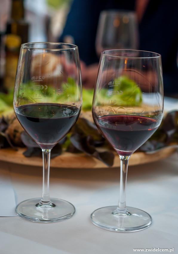 Kraków - Klimaty Południa - degustacja win z winnicy Vaziani - Saperavi
