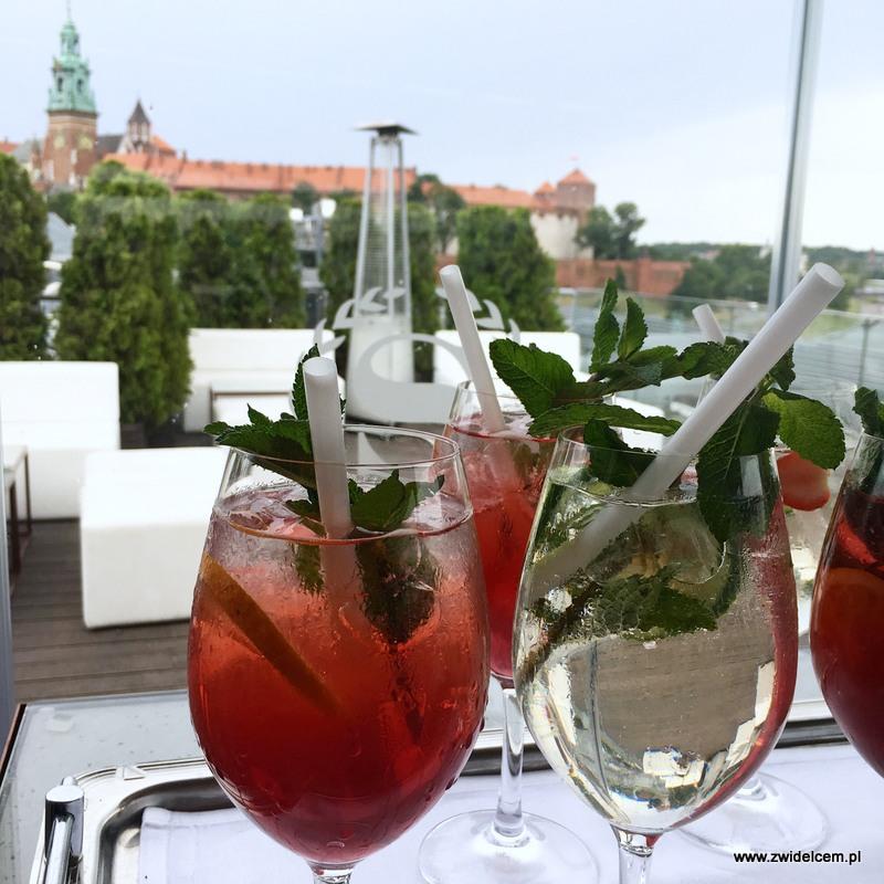 Kraków - Sheraton Grand Kraków - smaki lata - widok z tarasu hotelu